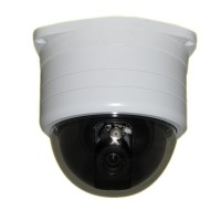 "Pan/Tilt/Zoom PTZ Binnen/Buiten Dome Camera 540TVL 1/3"" SONY CCD  4-9mm varifocaal"